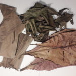 Mix listů (Mandlovník, Banánovník, Guava)